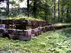 zidurile cetății sarmizegetusa regia